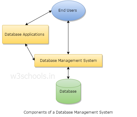 Components of a Database Management System
